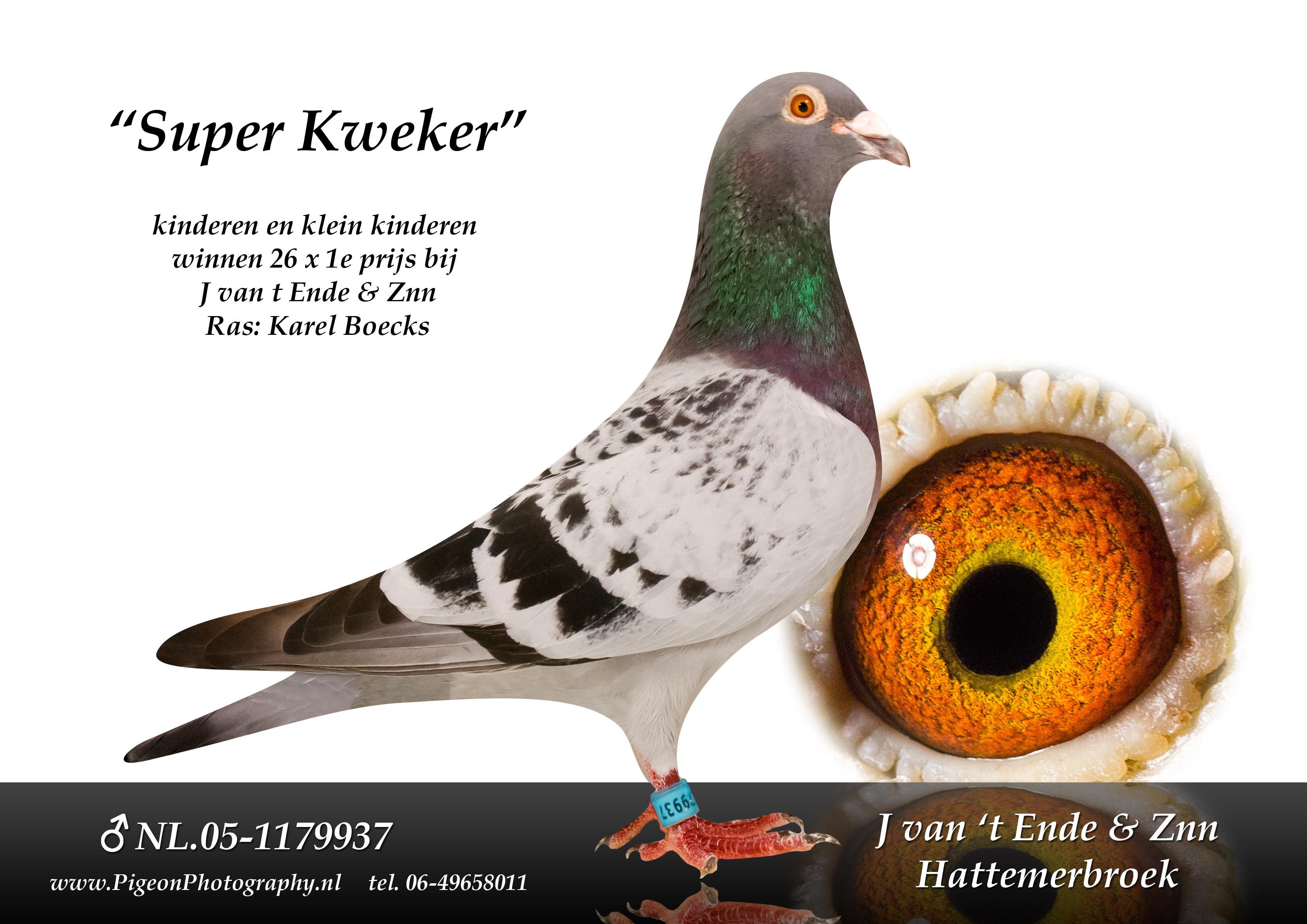 NL05-1179937_superkweker_foto